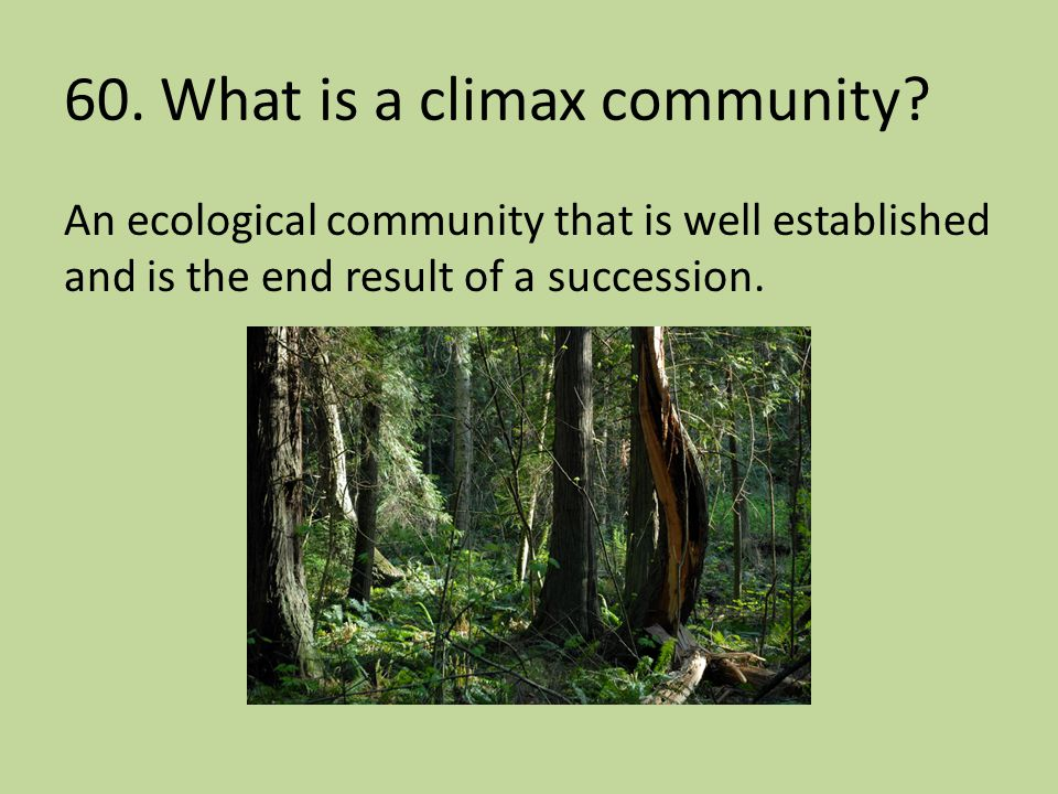 60. What is a climax community