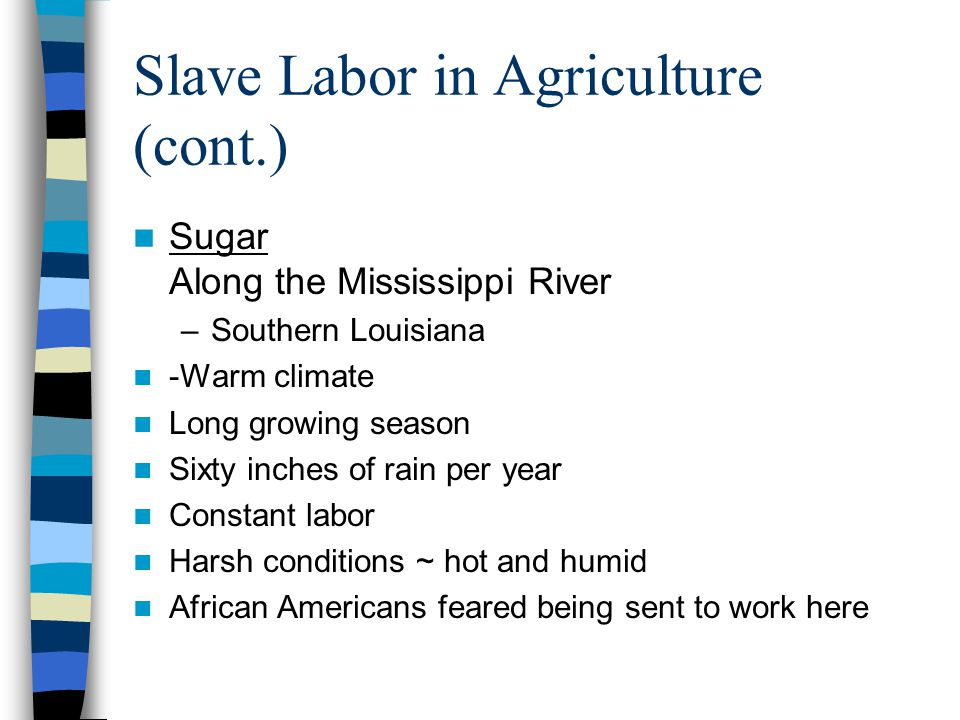 an analysis of slave life on the warm climate Corn is a summer crop that is best grown in a climate that offers warm weather and long sun-filled days ideal climate & soil for corn growth.
