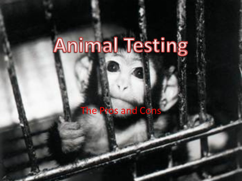 cosmetic testing on animals pros and cons
