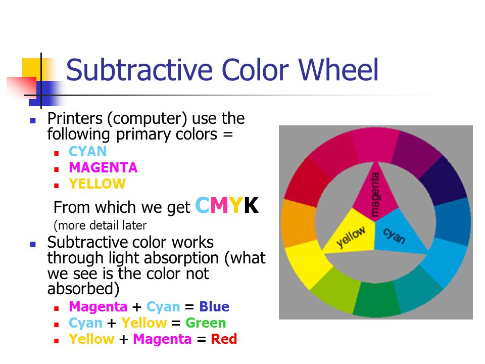 The Importance Of Color