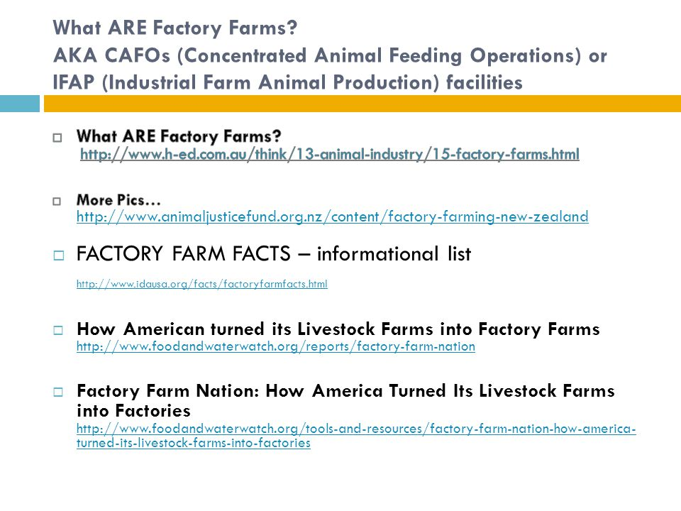 the moral and ethical issues with concentrated animal feeding operation Advocates of humane treatment of animals and sustainable animal agriculture   parallel battles against concentrated animal feeding operations (cafos)   there are logical arguments on both sides of this contentious issue  including  farm animals, is a stronger reflection of our basic ethical or moral.