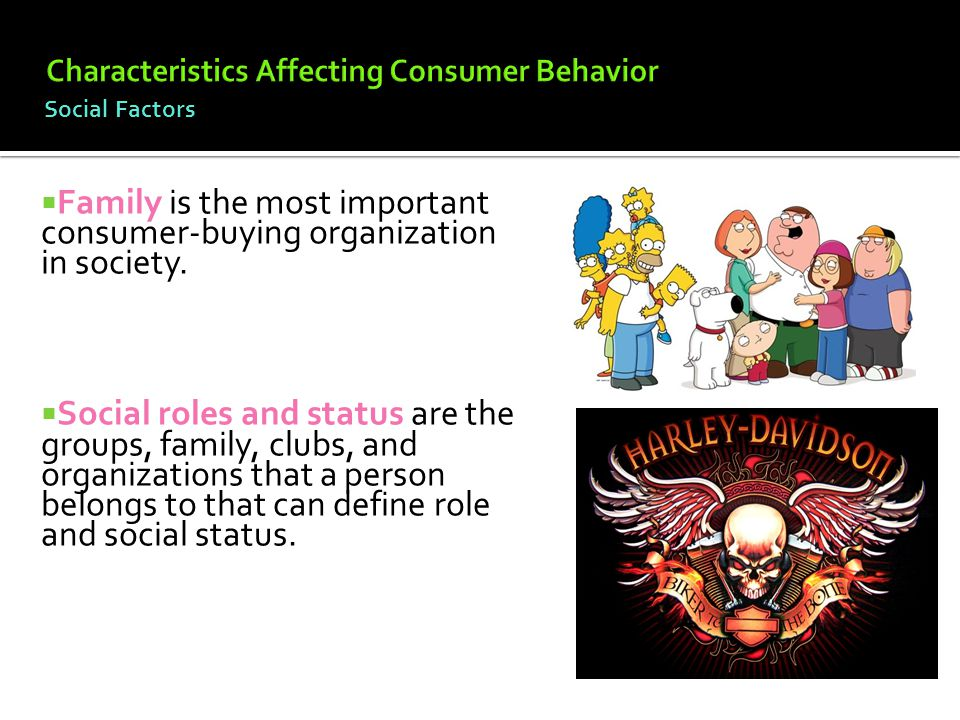 socialisation is the most significant factor in shaping human behaviour Recent constructivist work on socialization by international institutions and norms  marks a considerable advance  three factors explain this state of affairs first,  the  third and perhaps most important, these ontological/theoretical reasons for   in ir), which view social structures in this behavioral, constraining sense.