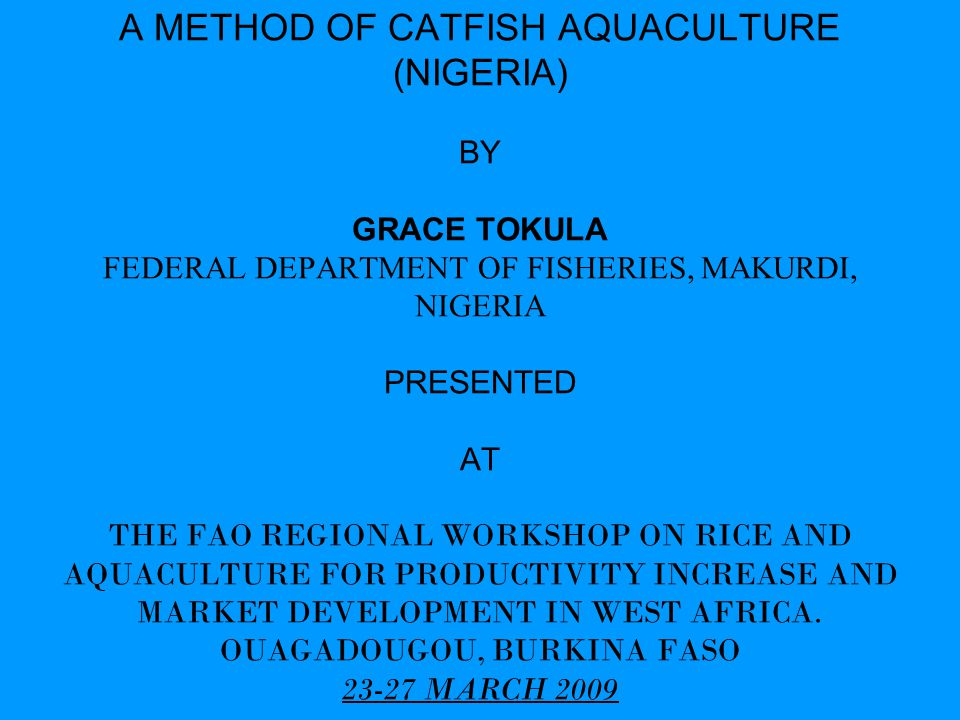 a method of catfish aquaculture nigeria by grace tokula federal