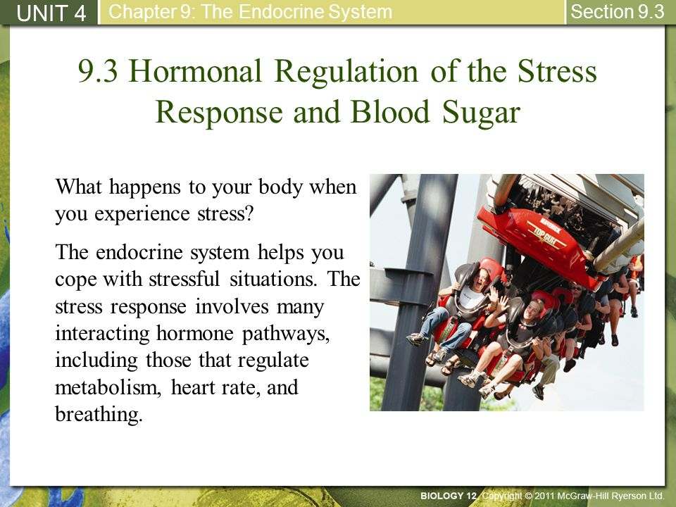 hormonal regulation of blood sugar level pdf