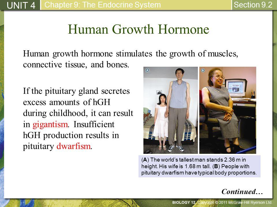 unit 4 human growth development