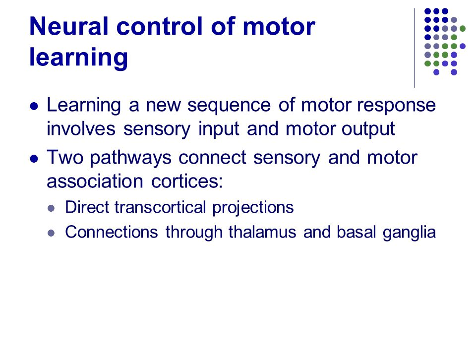 Learning And Memory Ppt Video Online Download