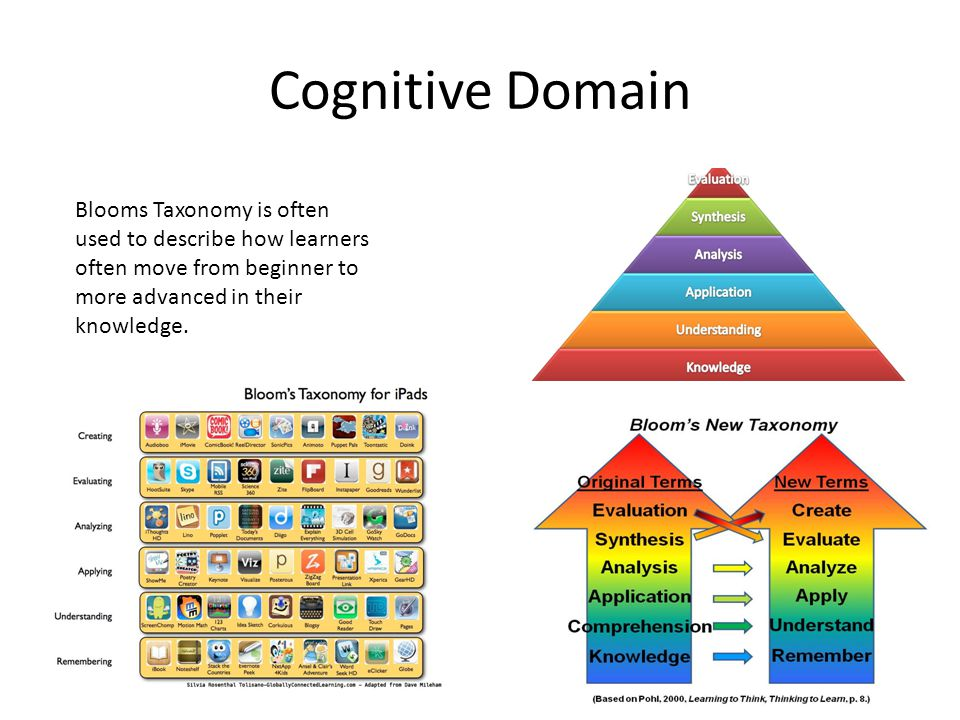 taxonomy essay Read this essay on bloom's taxonomy come browse our large digital warehouse of free sample essays get the knowledge you need.