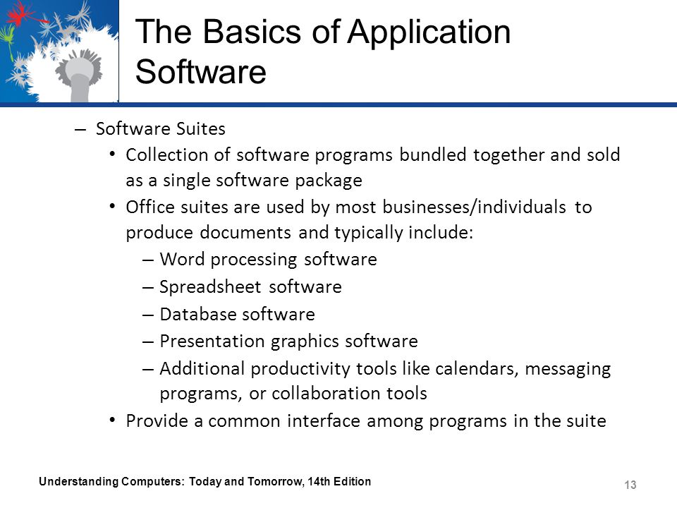 The Basics of Application Software