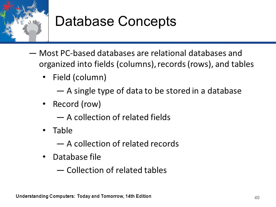 Database Concepts Most PC-based databases are relational databases and organized into fields (columns), records (rows), and tables.