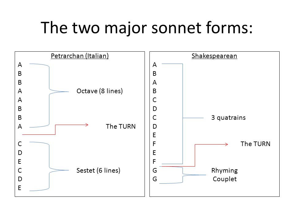 comparison of two sonnets A summary of sonnet 18 in william shakespeare's shakespeare's sonnets learn exactly what happened in this chapter, scene shall i compare thee to a summer's day the next eleven lines are devoted to such a comparison.