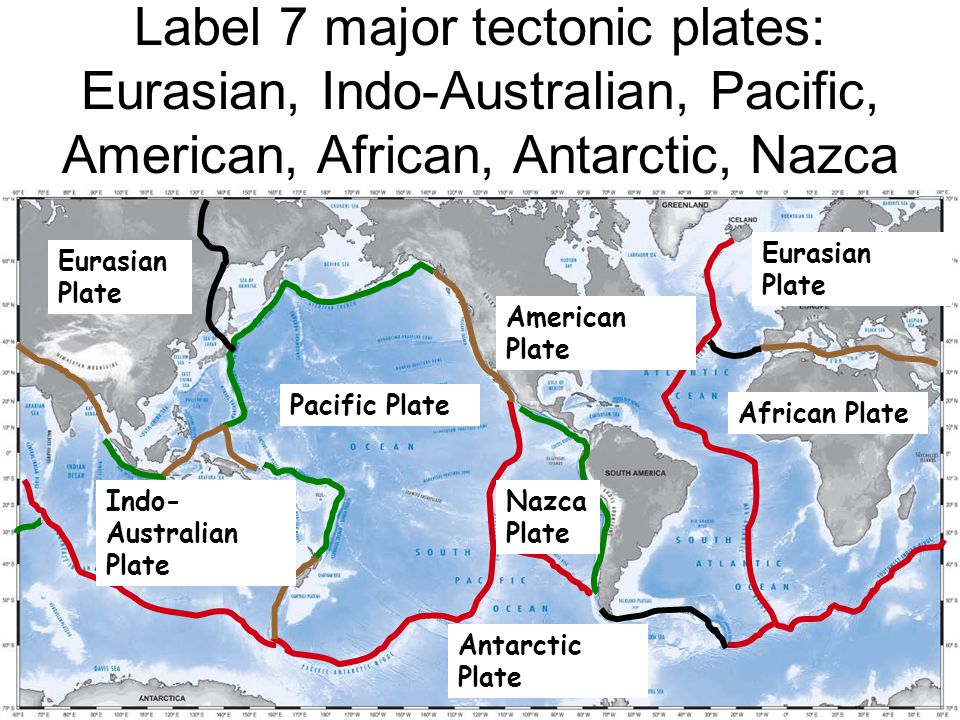 Label 7 Major Tectonic Plates Eurasian Indo Australian Pacific American