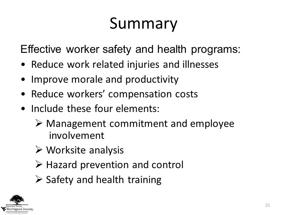 Summary Effective worker safety and health programs: