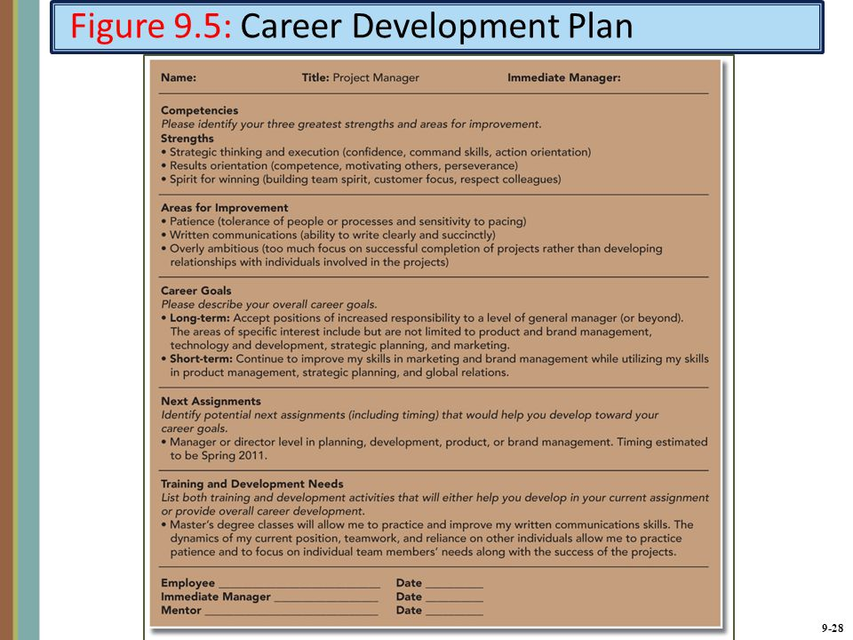 Employee development plan examples classified employee for Five year career development plan template