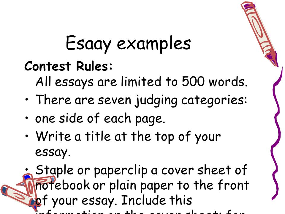 500 Word Essay Examples