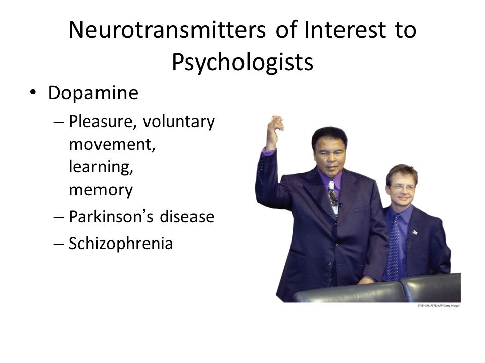 the role of neurotransmitters on aggression But they might also cause serious side-effects such as aggressive behavior   glutamate is a neurotransmitter that plays an essential role in.