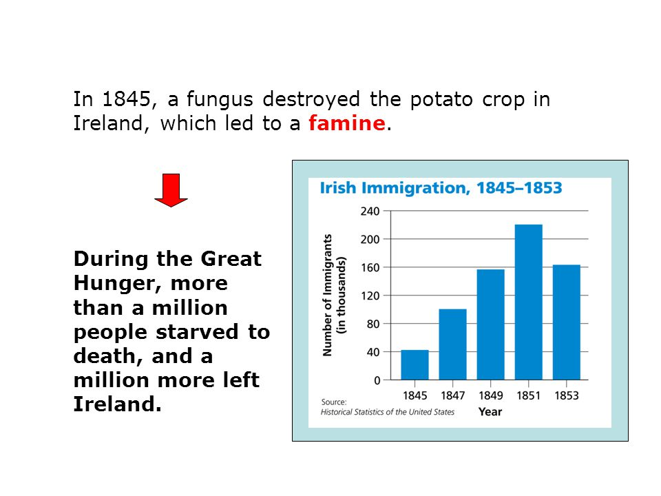 11.2 notes In 1845, a fungus destroyed the potato crop in Ireland, which led to a famine.