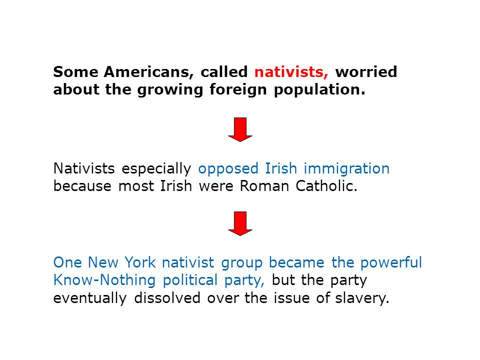 Some Americans, called nativists, worried about the growing foreign population.