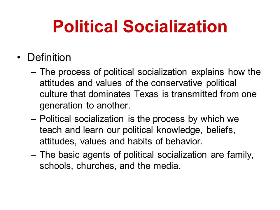 political socialization products essay