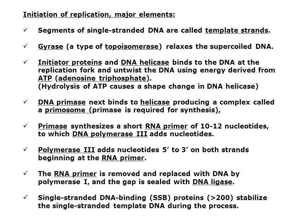 Initiation of replication, major elements: