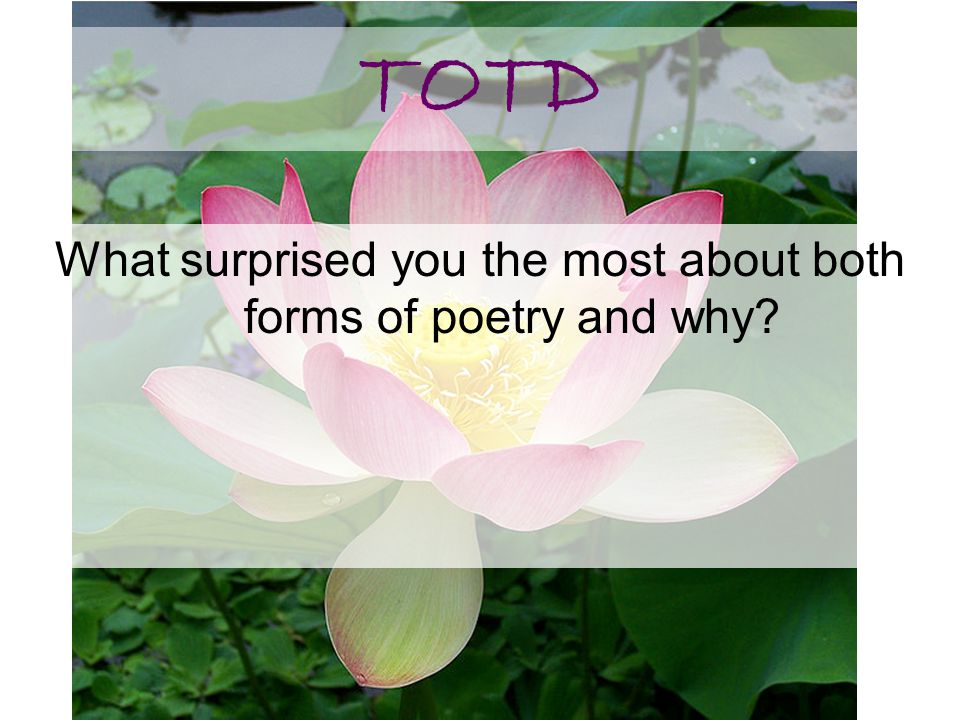 What surprised you the most about both forms of poetry and why