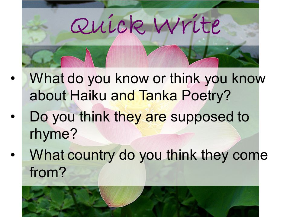 Quick Write What do you know or think you know about Haiku and Tanka Poetry Do you think they are supposed to rhyme