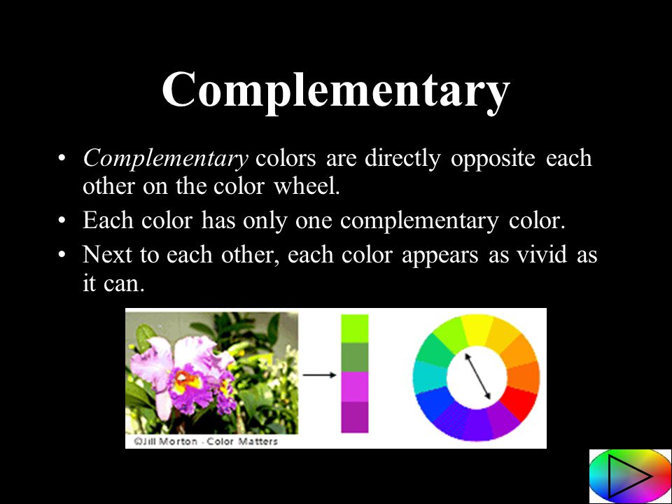 Colors Directly Opposite Color Wheel created by: kari ann jones morrice area schools - ppt download