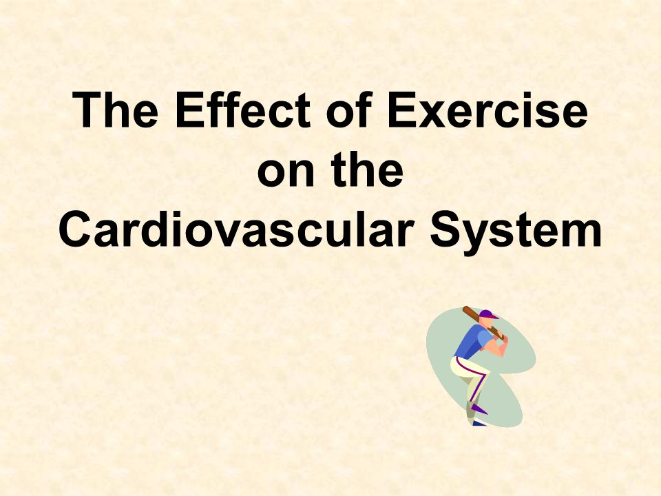 jogging activity and cardiovascular system When one begins to exercise, the nervous and endocrine system respond by influencing the heart's beating frequency and force in response to exercise, heart rate will rise in a predictable manner the speed of the heart rate will increase in proportion to the increasing workload.