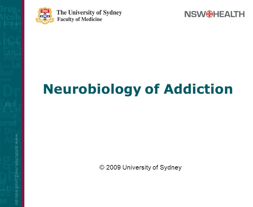 Neurobiology of Addiction - ppt video online download