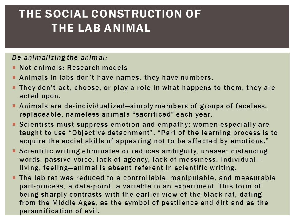 an introduction to the history of animal activists Introduction in recent years, an  outraged animal rights activists in britain began to pressure financial institutions associated with hls to  anti-defamation.