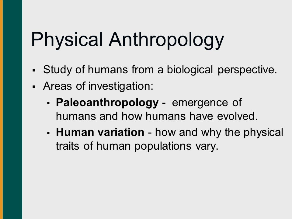 four main perspectives of anthropology Because the scholarly and research interests of most students are readily identifiable as centering in one of the four conventionally recognized subfields of anthropology – archaeology, linguistic anthropology, physical anthropology, and sociocultural anthropology – the department formulates guidelines for study within each of these.
