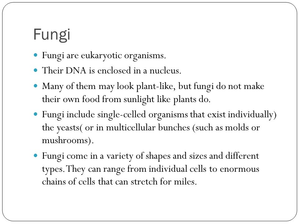 Fungi Fungi are eukaryotic organisms.