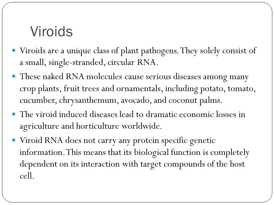 Viroids Viroids are a unique class of plant pathogens. They solely consist of a small, single-stranded, circular RNA.