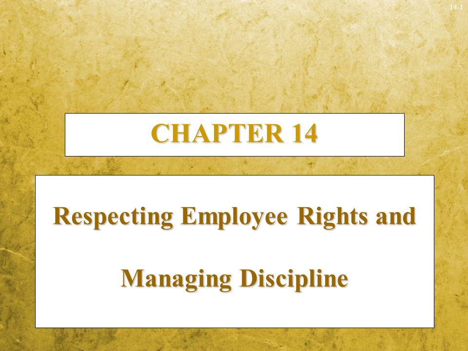 employee rights and discipline essay Lets discuss in detail about the importance of discipline and punctuality at workplace importance of discipline and punctuality without discipline, employees.