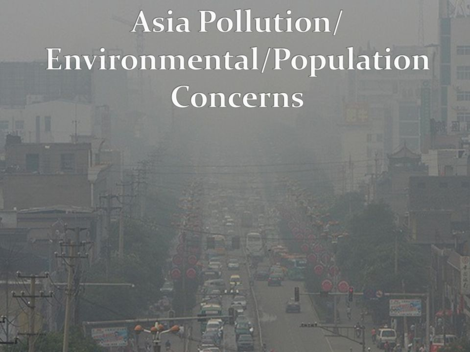 overpopulation and deforestation essay