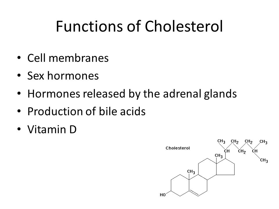 Cholesterol level sperm production