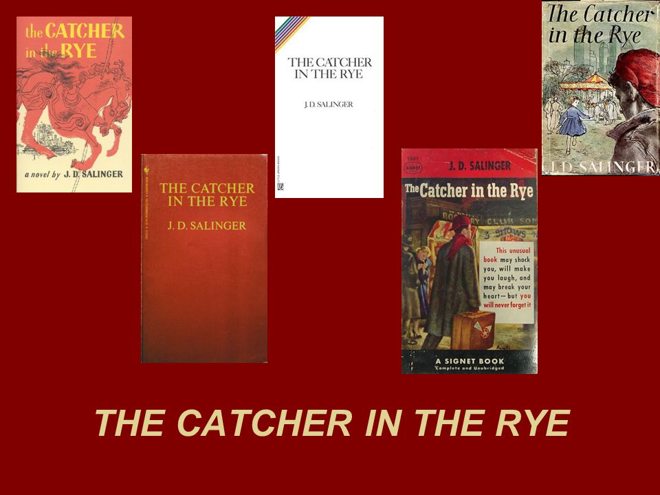 book analysis catcher in the rye Dive deep into j d salinger's the catcher in the rye with extended analysis, commentary, and discussion.