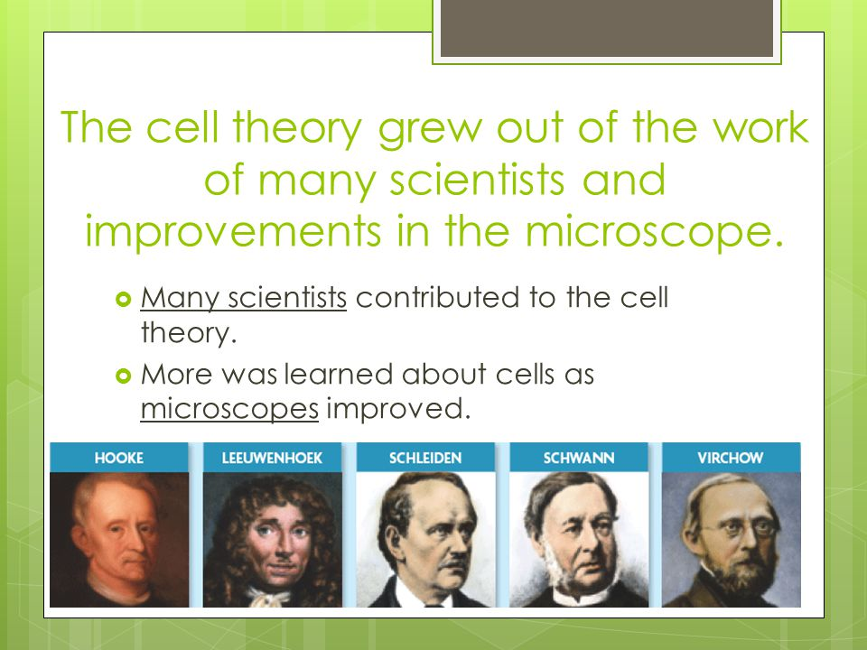 The cell theory grew out of the work of many scientists and improvements in the microscope.