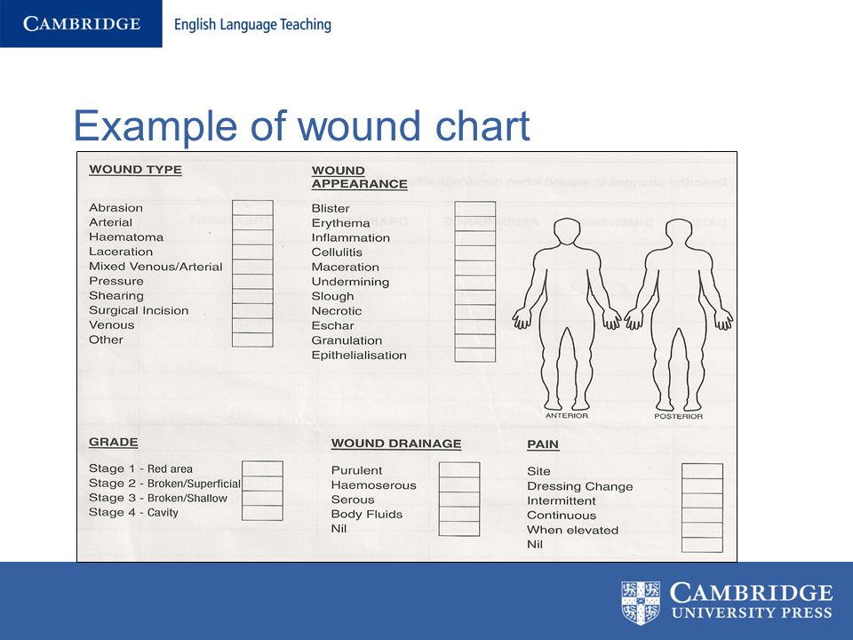 Wounds, Charts and Medication: - ppt video online download
