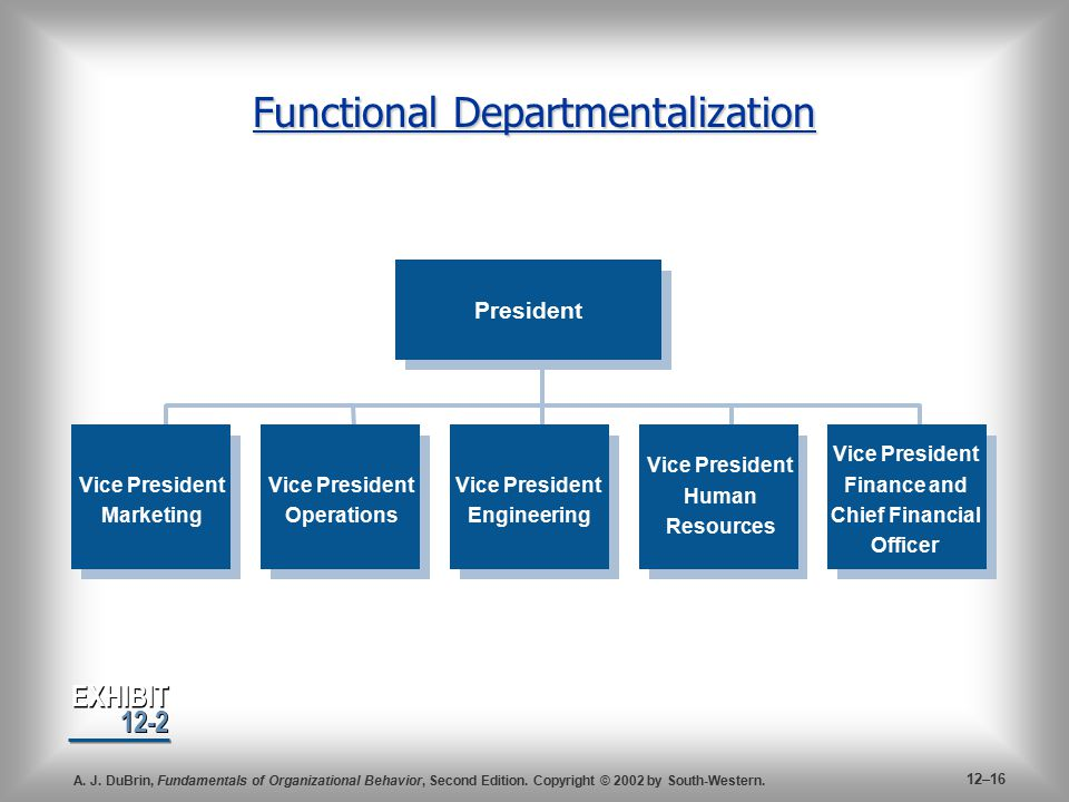 organization structure functional departmentalization Types of departmentalization used by business  functional departmentalization can be used in  the functional- based organization structure tends to.