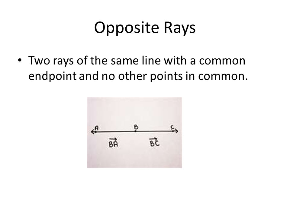 Opposite Rays Two rays of the same line with a common endpoint and no other points in common.