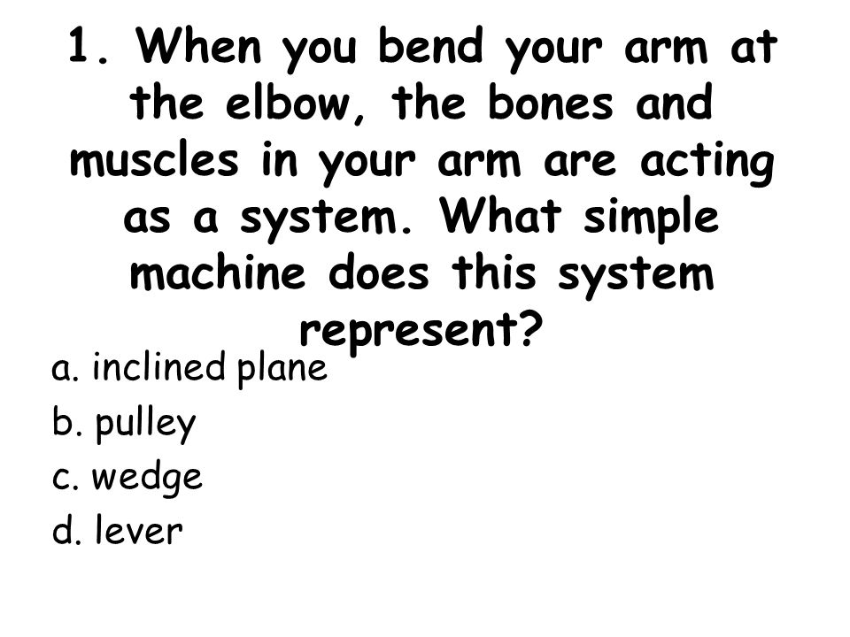 1 When You Bend Your Arm At The Elbow The Bones And Muscles In
