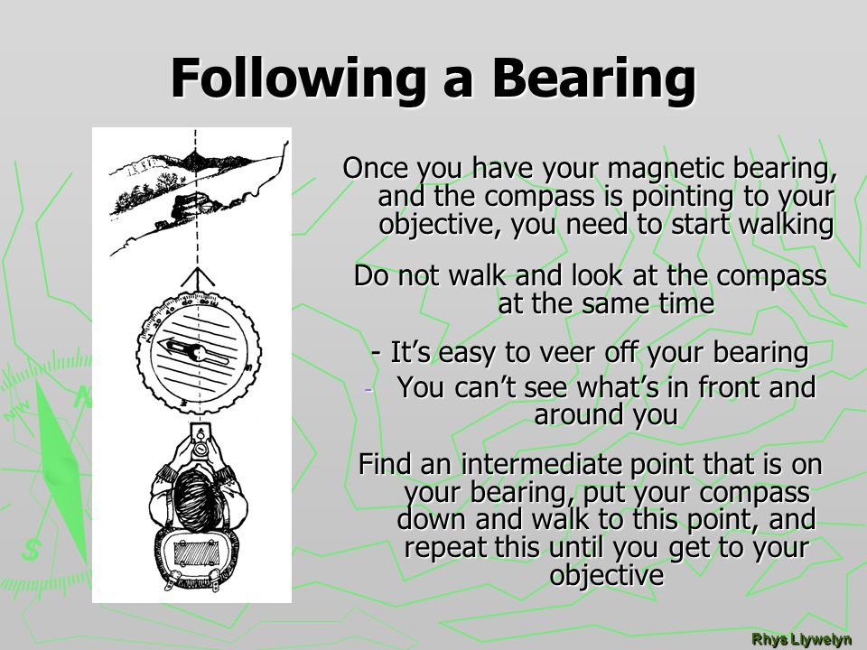 the compass taking a bearing ppt