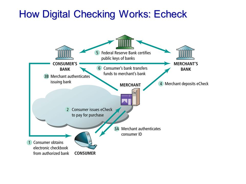 how to make echeck payment