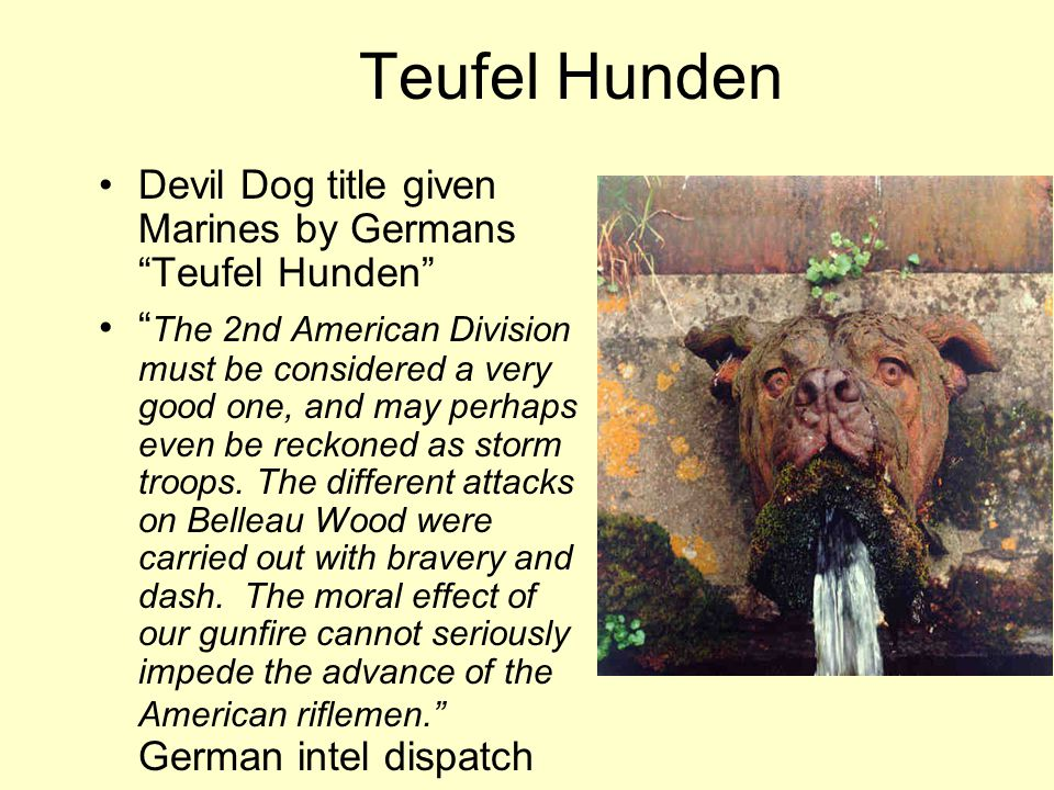 Teufel Hunden Devil Dog title given Marines by Germans Teufel Hunden