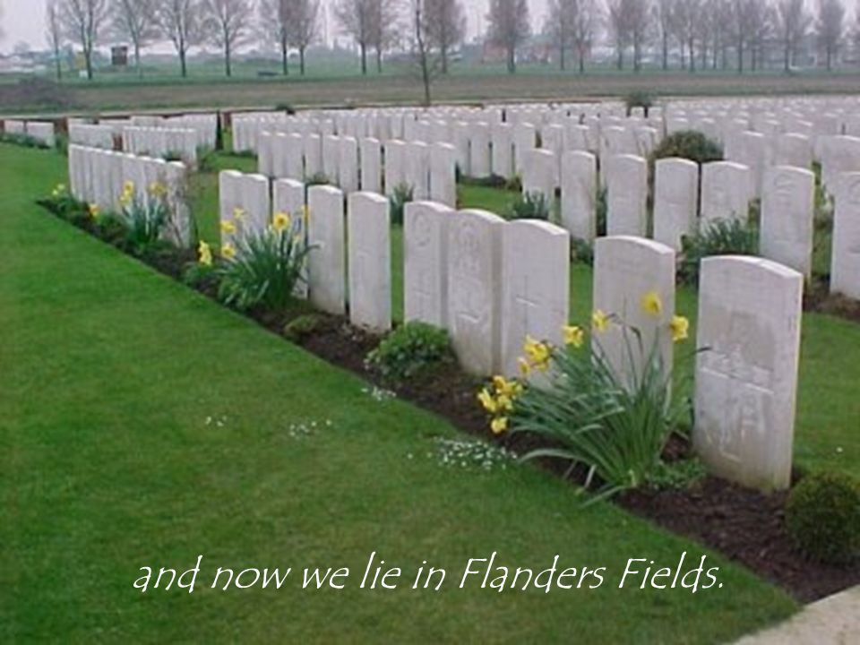 and now we lie in Flanders Fields.