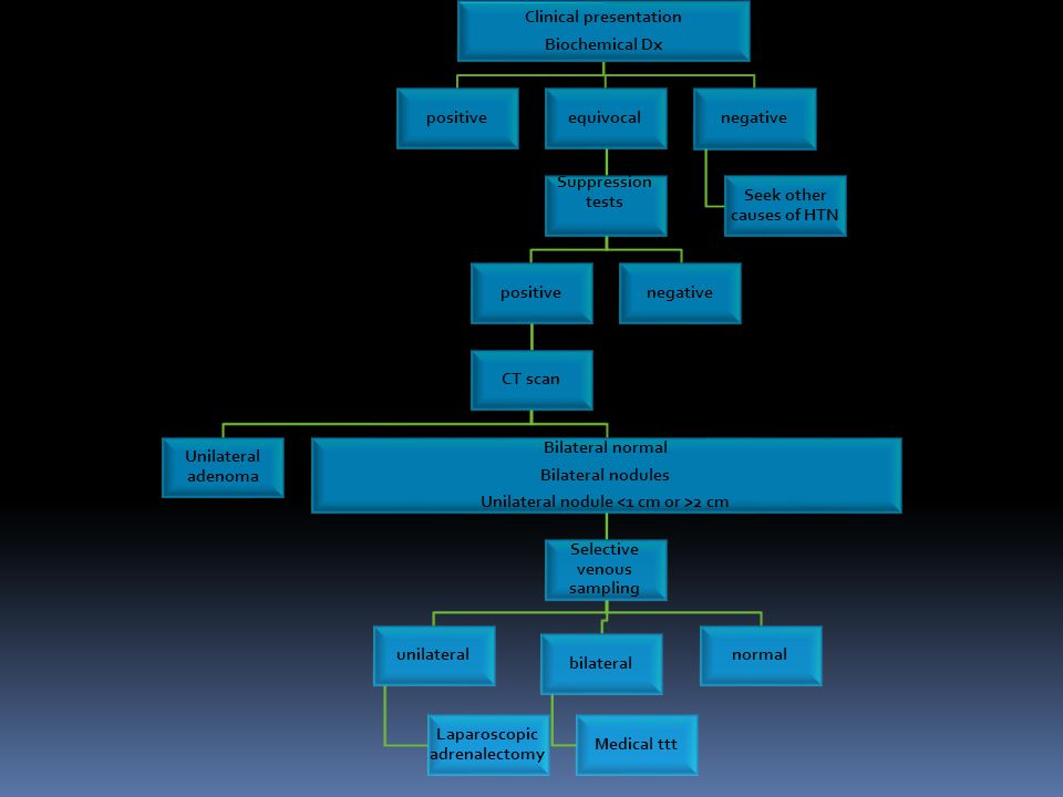 download corpus callosum a