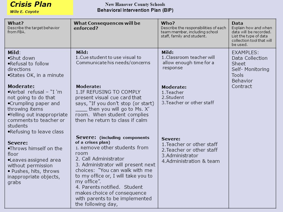Behavior Intervention Plan Behavior Intervention Plan Learn Three