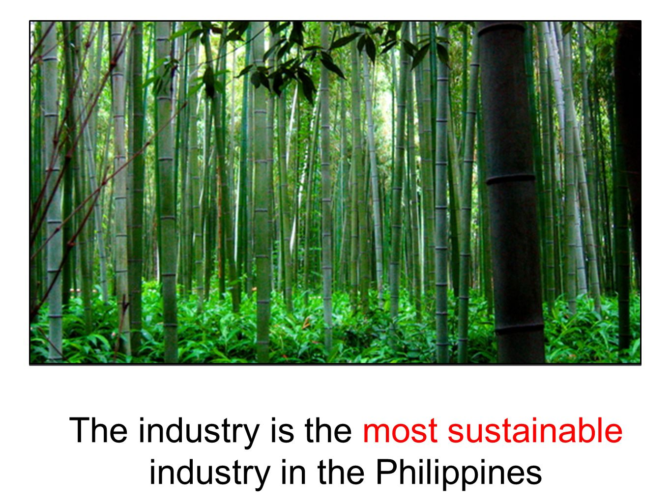 """philippine industrialization Conclusion the state of industrialization in the philippines design by dóri sirály for prezi  """"technological innovation""""  from an agricultural society to a society of manufacturing goods and services."""