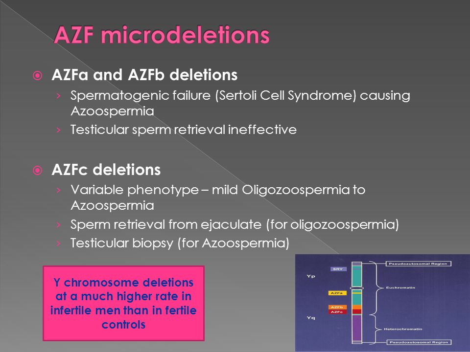 AZF microdeletions AZFa and AZFb deletions AZFc deletions