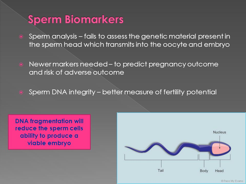 Sperm Biomarkers Sperm analysis – fails to assess the genetic material present in the sperm head which transmits into the oocyte and embryo.